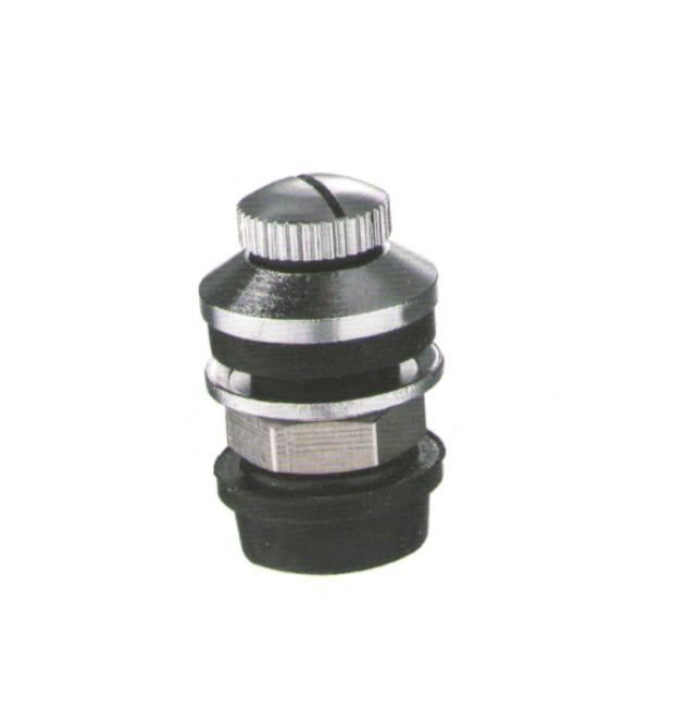 SP518 tire valve